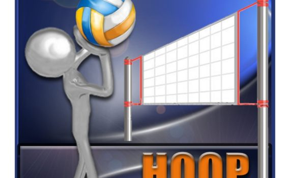 logo volley